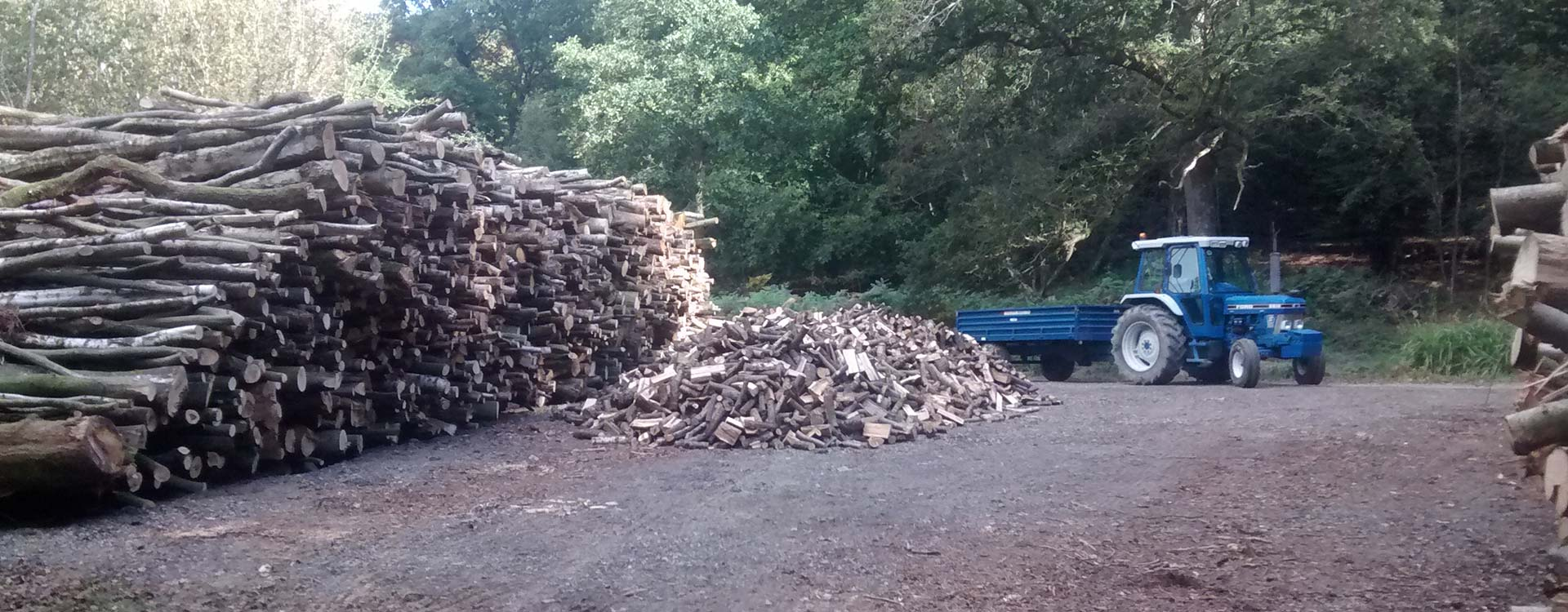 Firewood-Processing-and-Log-Supply-04